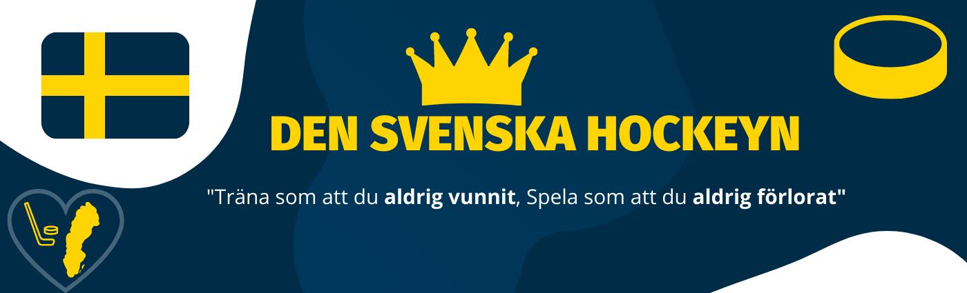 Förklarat den svenska hockeyn